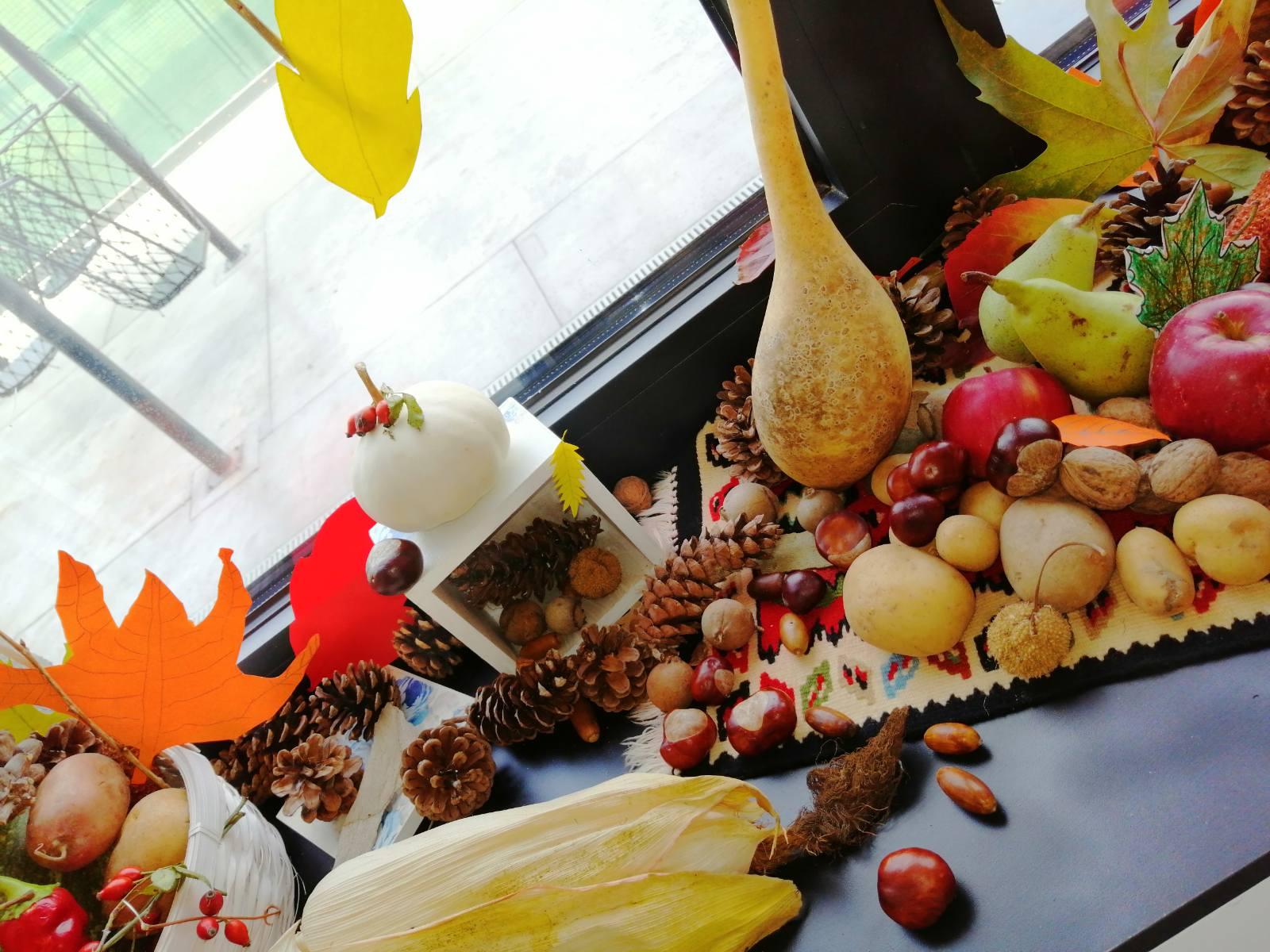 Jesenji kutak 09