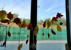Jesenji kutak 08
