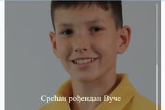 Rodjendan Vuk