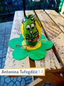 Antonina-Tufegdzic-I-1
