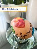 Mila-Dzelatovic-1_12