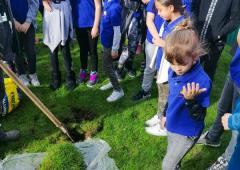 Savremeni osnovci i srednjoškolci zasadili drvo