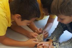 Zelena škola: Osnovci na radionici reciklaže
