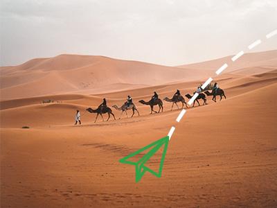 Jahanje kamila u Tunisu