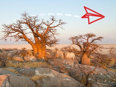 Pustinja Namib
