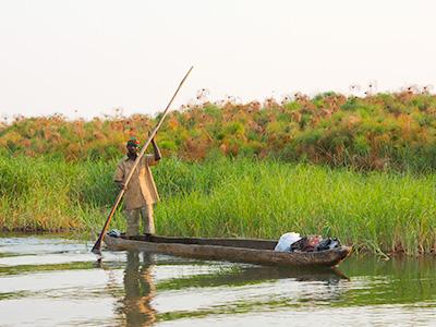 Močvara u Mozambiku